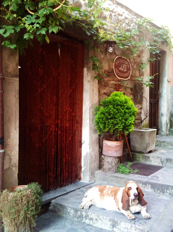 Fine Dining and Natural Beauty Day - Italy Tours