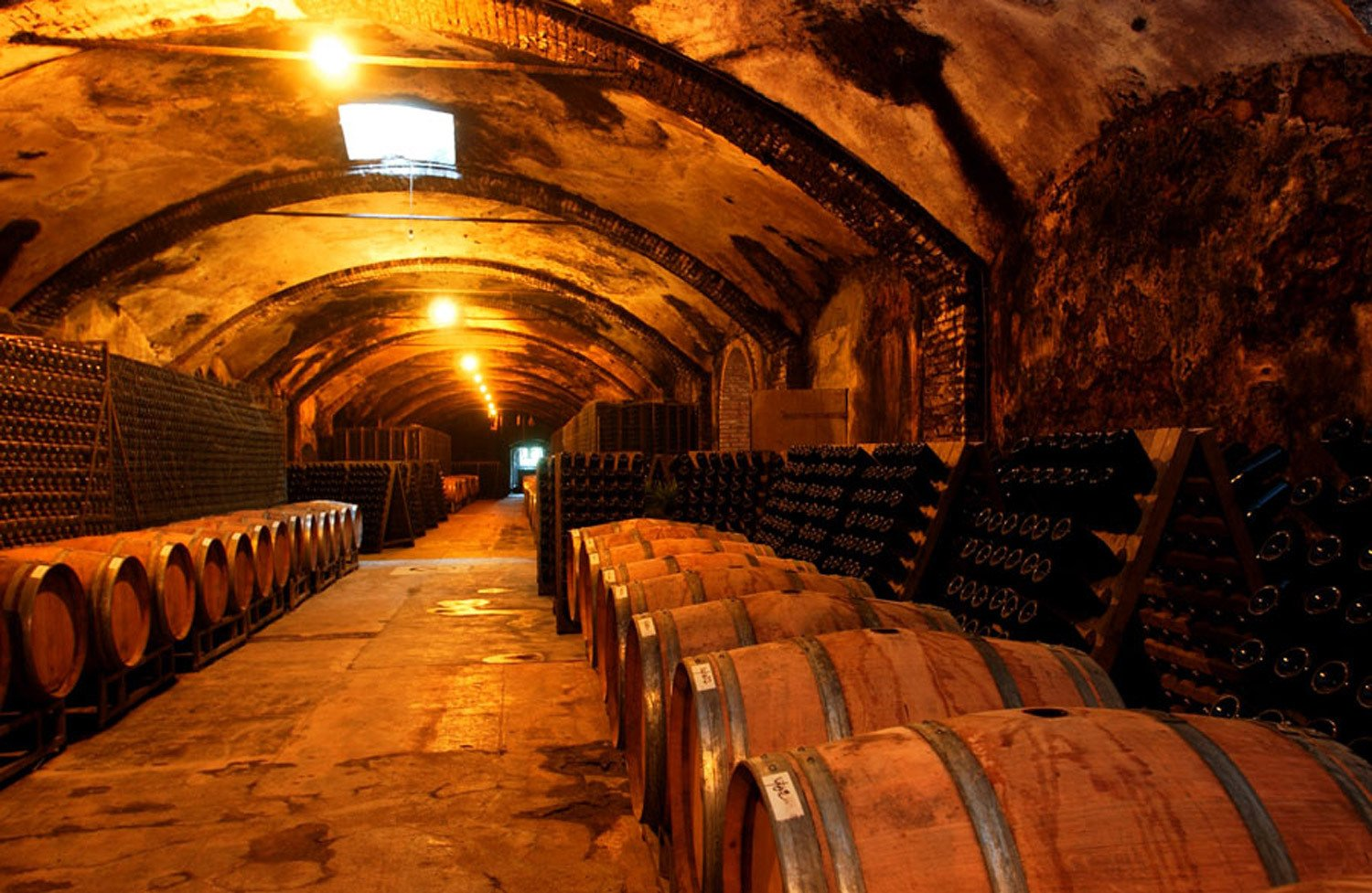 Big Winery Italy tours