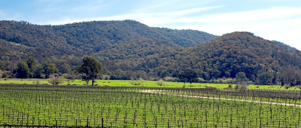 King Valley Private Gourmet Food and Wine Italy Tours