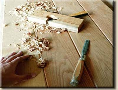 segatura legno