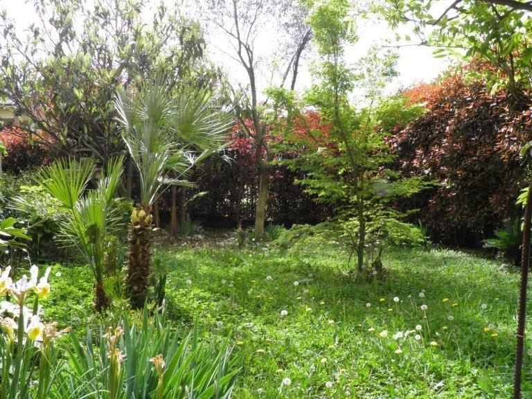 giardino 3 locali cambiago