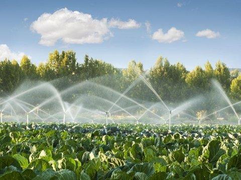 Irrigazione Statica e Dinamica