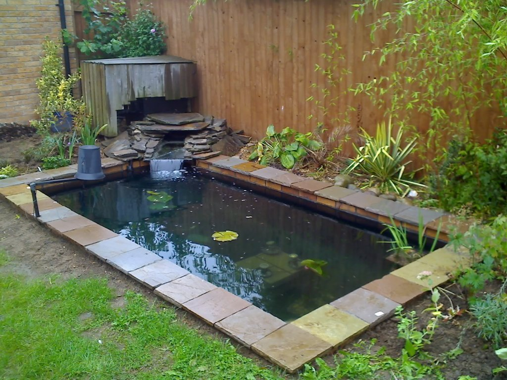 Koi ponds for In ground koi pond