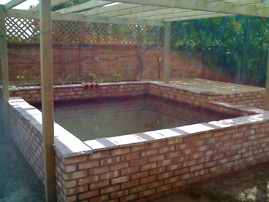 Koi ponds for Building a koi fish pond