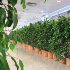 allestimento giardini, manutenzione giardini