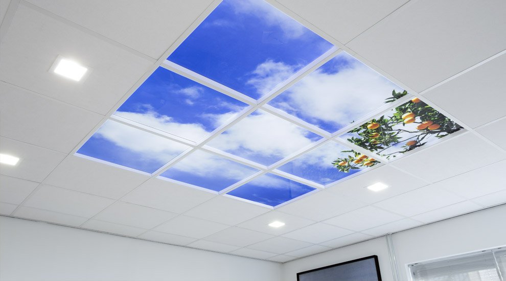 LED sky panel light with oranges & Sky