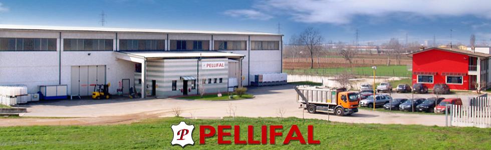 Pellifal
