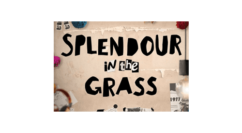 splendour in the grass logo