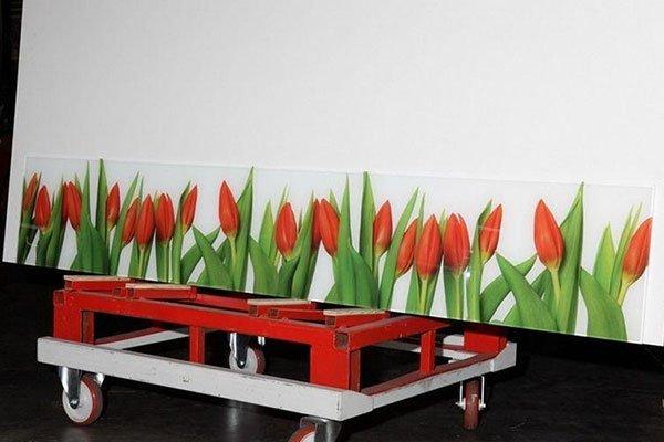 Specchi decorati con tulipani rossi