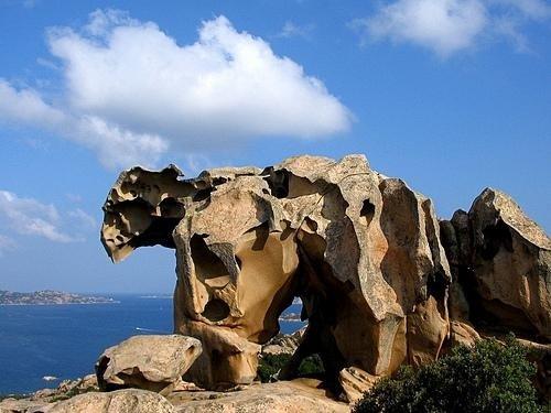 roccia orso Palau