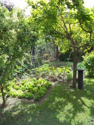 area verde con orto