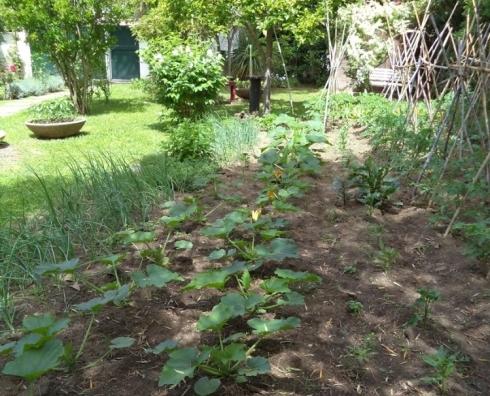 giardino con orto