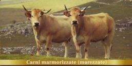 Carni marmorizzate