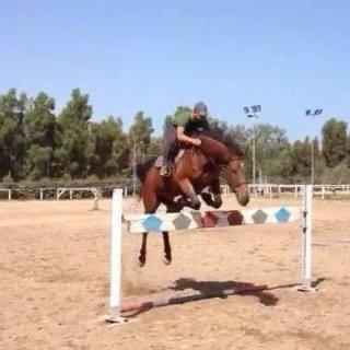 Sant'Elena Equestrian centre