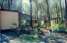 Camping La Mandragola