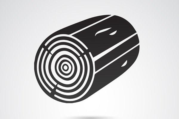 disegno tronco