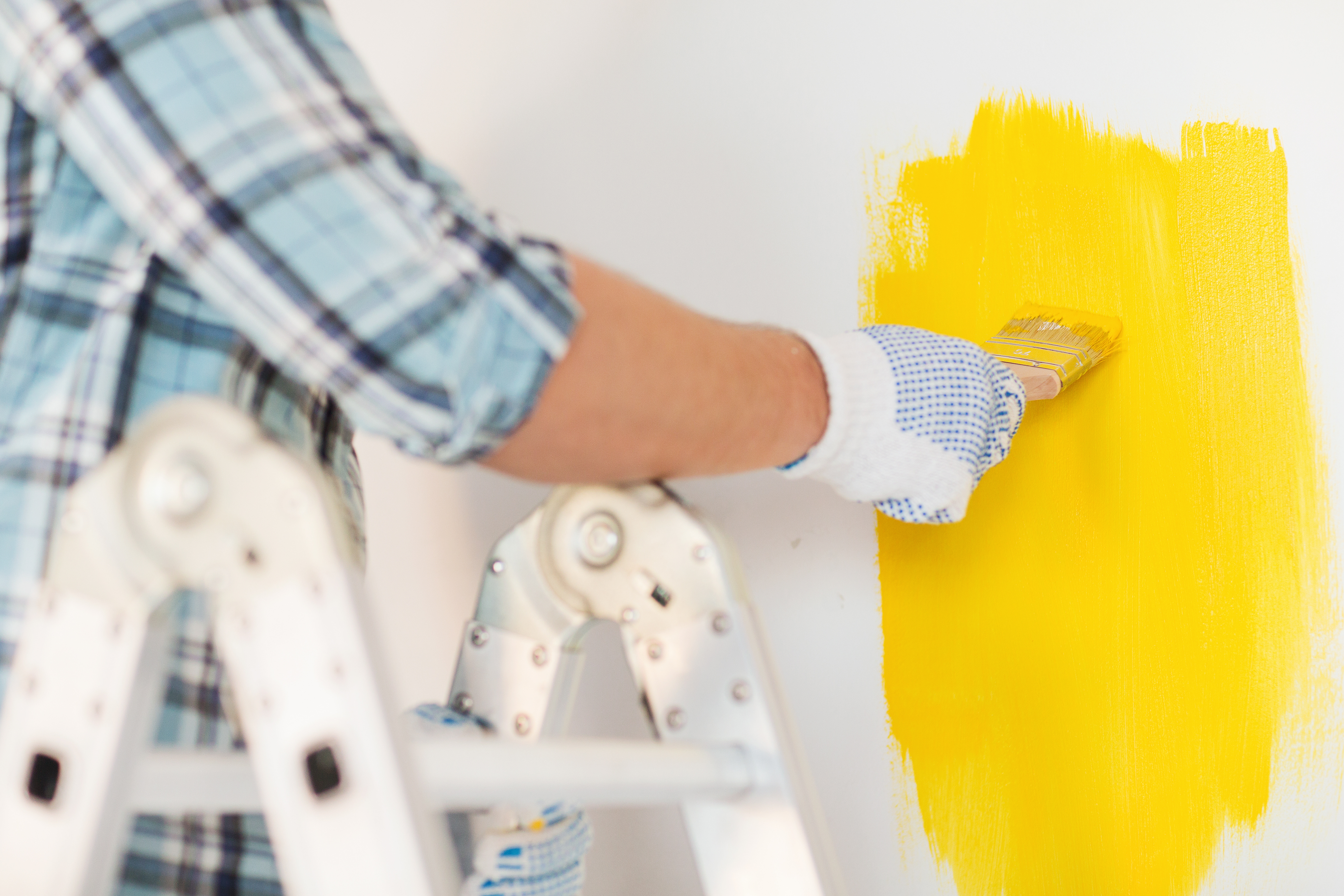 What are Painting Contractor Websites?