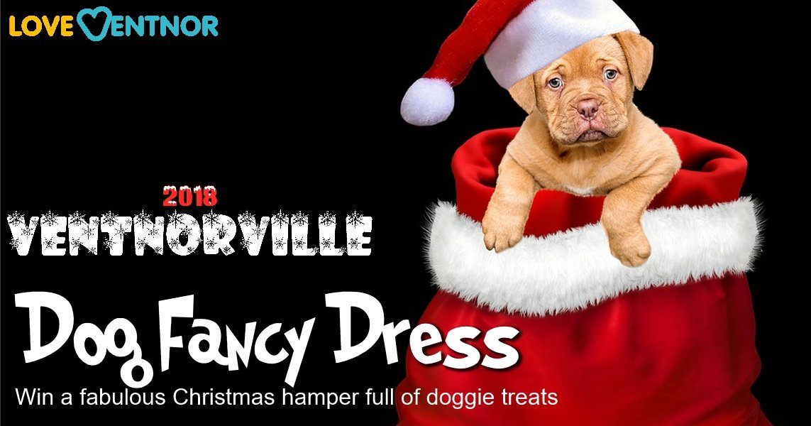 Love Ventnor Ventnorville Dog Fancy Dress Competition