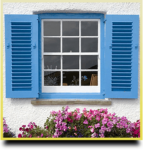 Box and Sash Windows