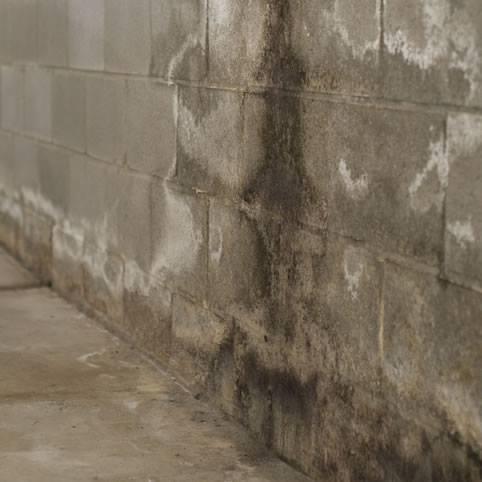Drainage Contractor & Basement Waterproofing