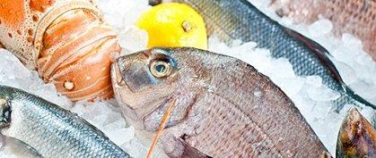 Degustazione di pesce a Venezia