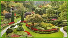 realizzazione giardini giapponesi