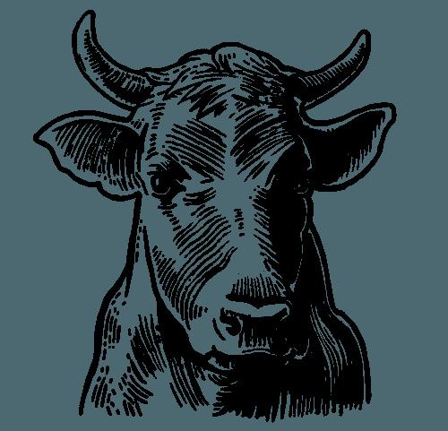 Meat Processing Augusta, GA