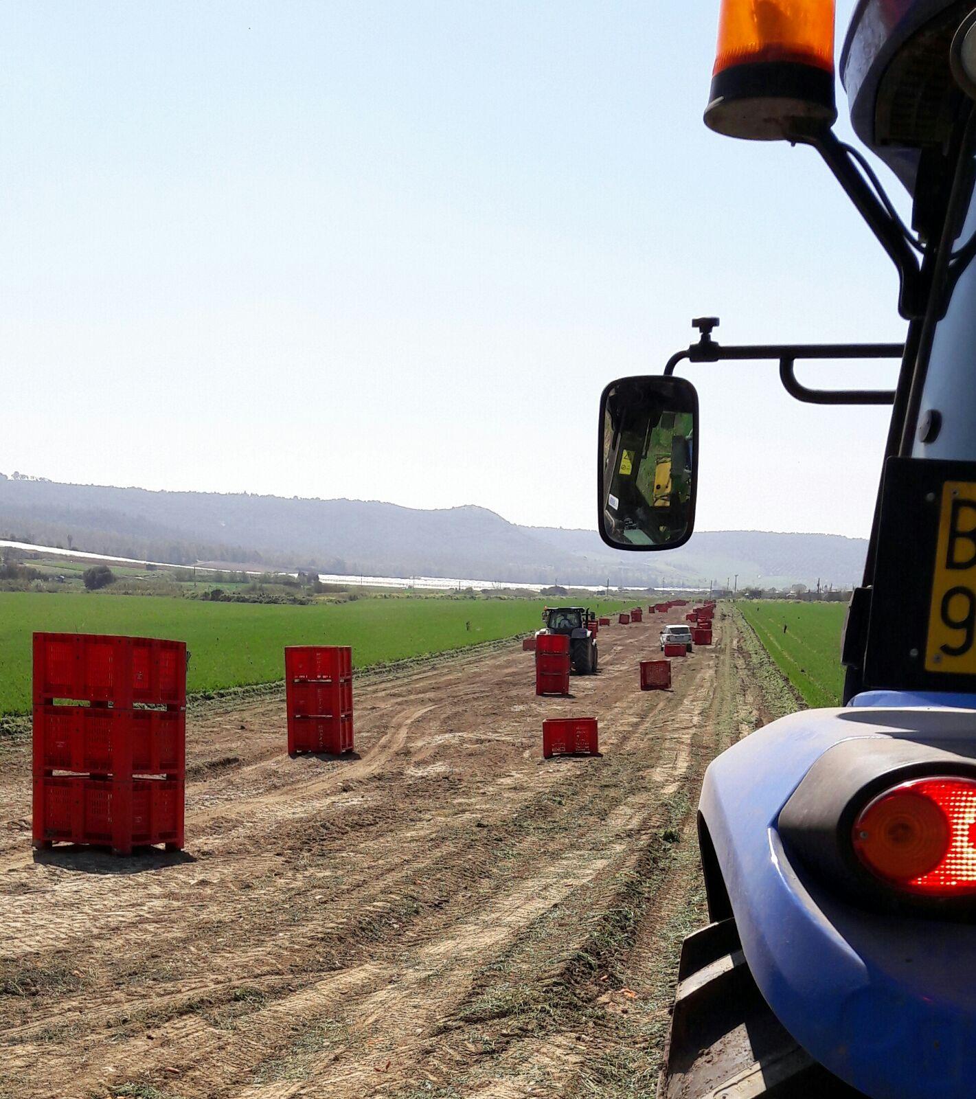 Dettaglio di macchinario agricolo in un campo