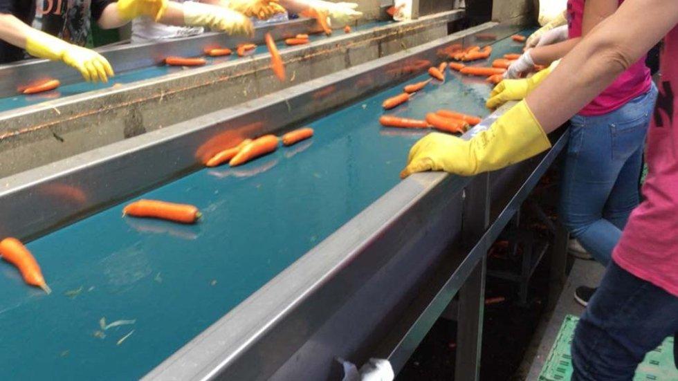 Macchinario per la separazione e controllo carote