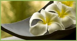 centrotavola con fiori, articoli regalo