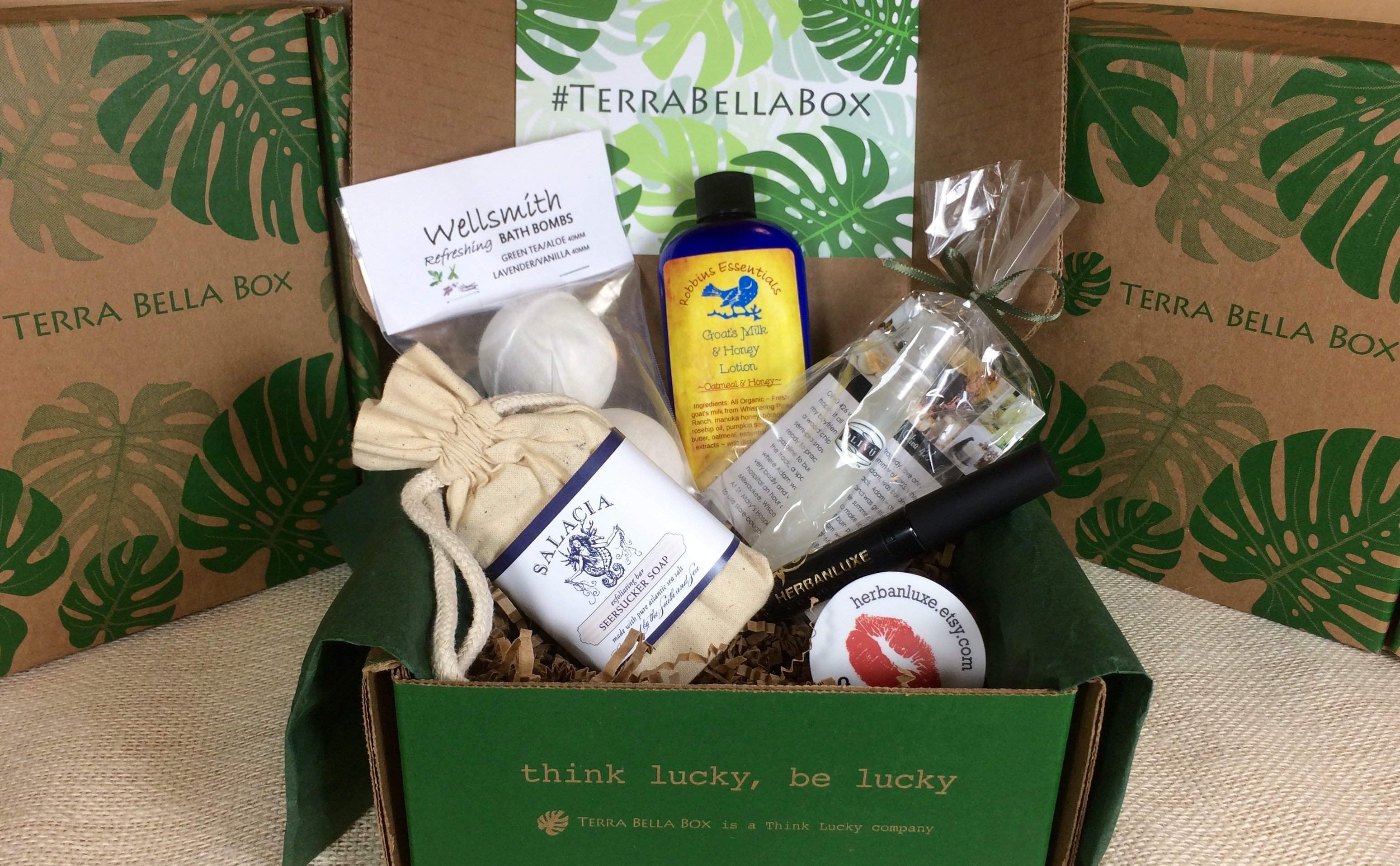 Image result for Terra Bella Box