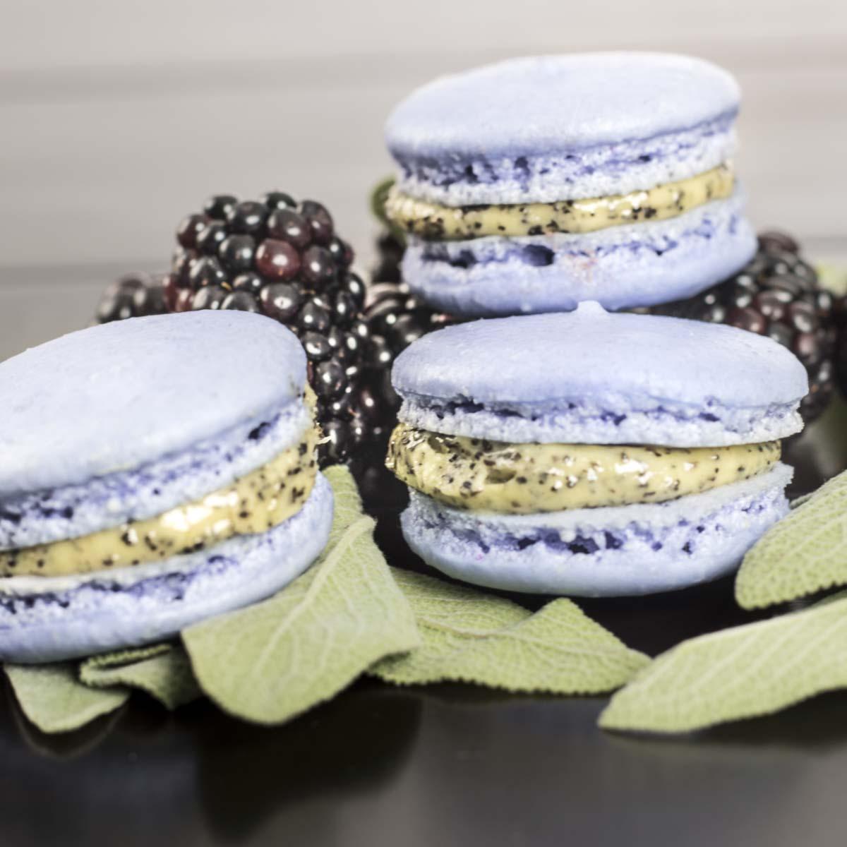 Madagascar Vanilla Bean macarons