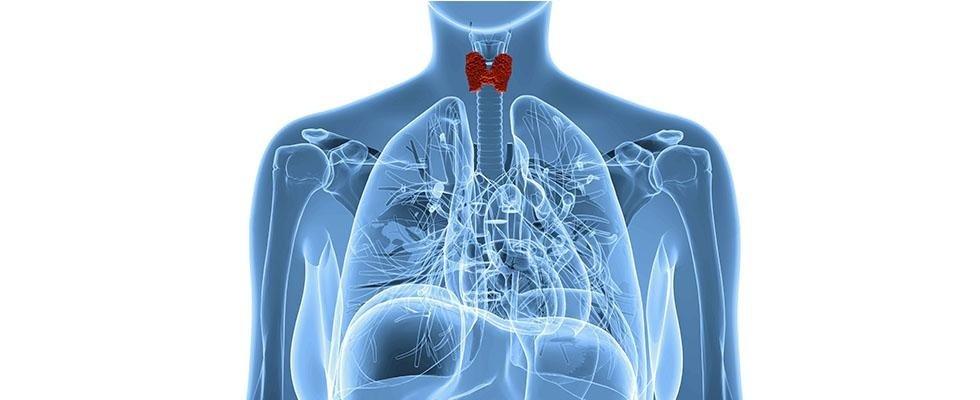 cura della tiroide Latina