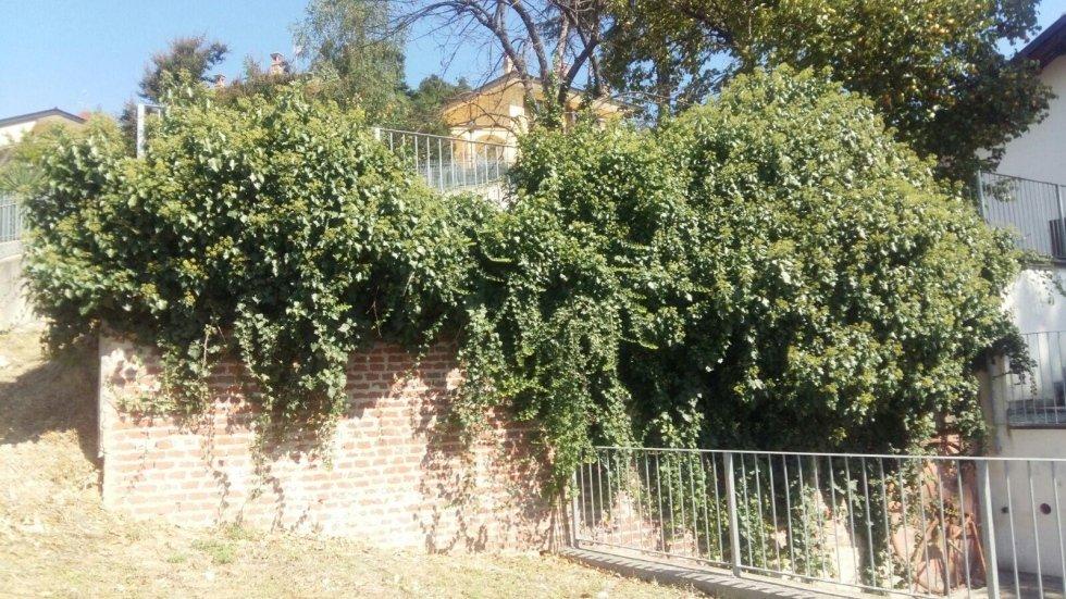 Villa con giardino a Bra