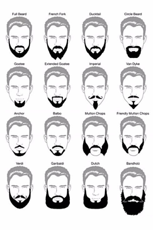 Le barbe
