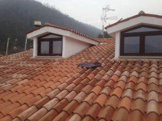 tegole tetto