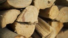 chiocchi di legno, legna da ardere, legna per camini