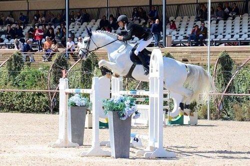 un fantino con un cavallo bianco che salta un ostacolo