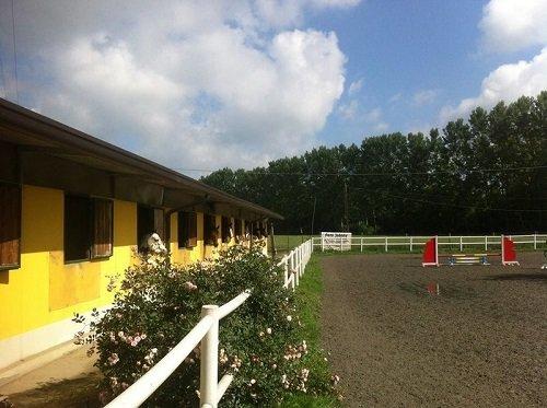 un recinto ippico e dei cavalli in una stalla