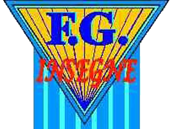 F.G. INSEGNE - logo