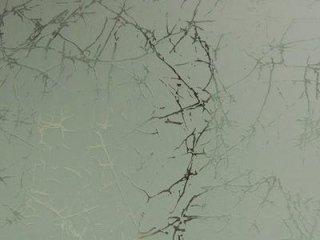 vetreria mariano Viterbo doccia