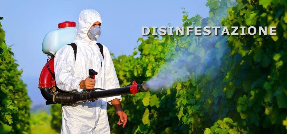 operaio spruzza insetticida su piante