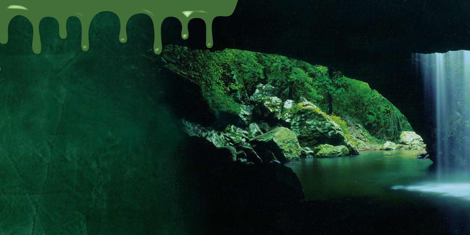 un paesaggio di una foresta con lago