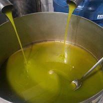 olio d'oliva mentre versa in contenitore
