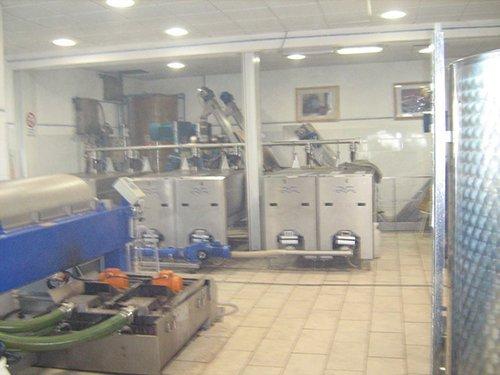 interno della fabbrica di vino