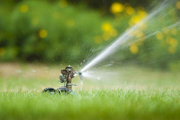 Water sprinklers on a lawn in Kailua, HI