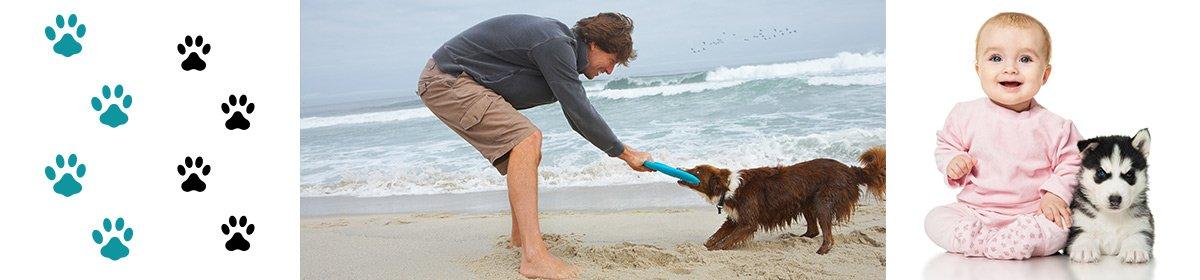 caseys beach veterinary clinic pet man beach baby with husky