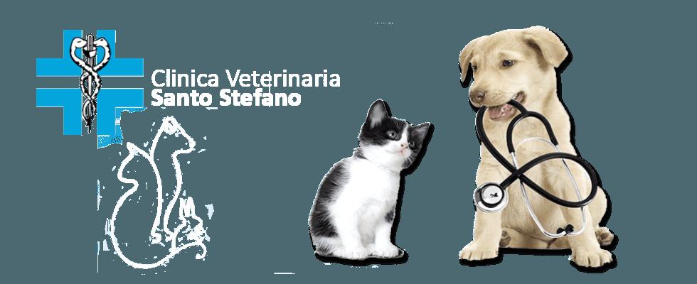 Clinica Veterinaria Santo Stefano