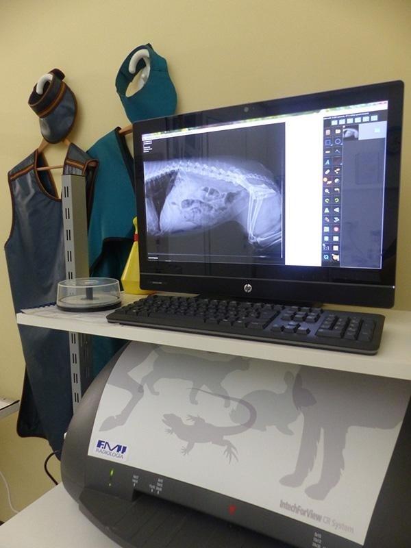 attrezzatura veterinaria