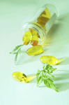 Natural health solutions in Anchorage, AK